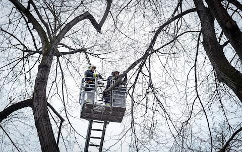 Fákat döntött ki a viharos szél Heves megyében