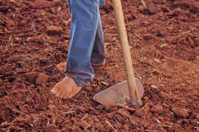 Bare foot farmer on soil