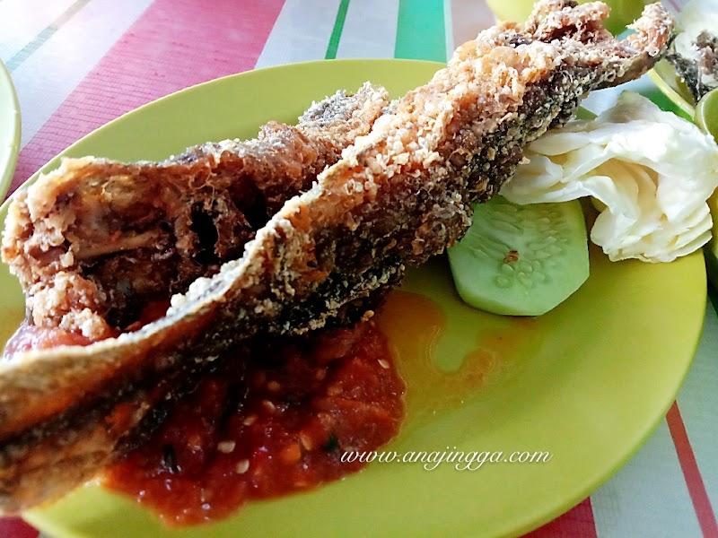 Makan tengahari di Pecal Lele Padang Jawa, Shah Alam