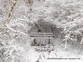 Snowy seat at Charnwood Water Loughborough