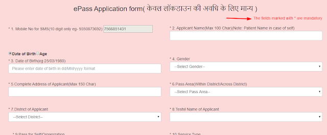 how-to-apply-epass-online-hindi-form