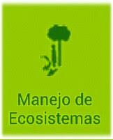 El jardín  Botánico del parque Valle-Carrascoy reabrirá en 2016 gestionado  por personas con Síndrome de  Down  365dbf5663c