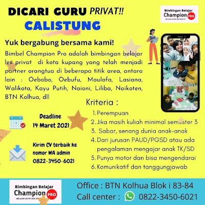 Loker Kupang Bimbingan Belajar Champion Pro Sebagai Guru Private