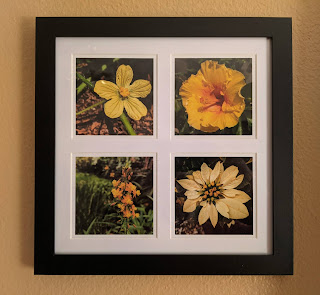 Yellow-Orange Flowers Photo Tetraptych by Citysqwirl