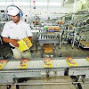 Lowongan Kerja PT Nestle Indofood Citarasa Indonesia (NICI) November 2016