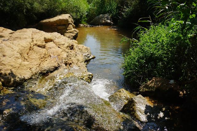 מפלי מים בנחל צלמון