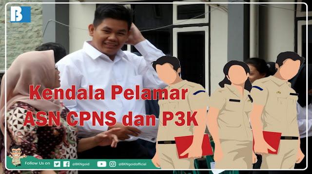 Pelamar ASN CPNS dan P3K saat Mendaftar Online