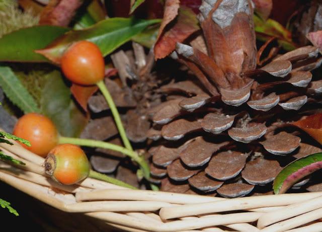 centro-piñas-hojas-ramas
