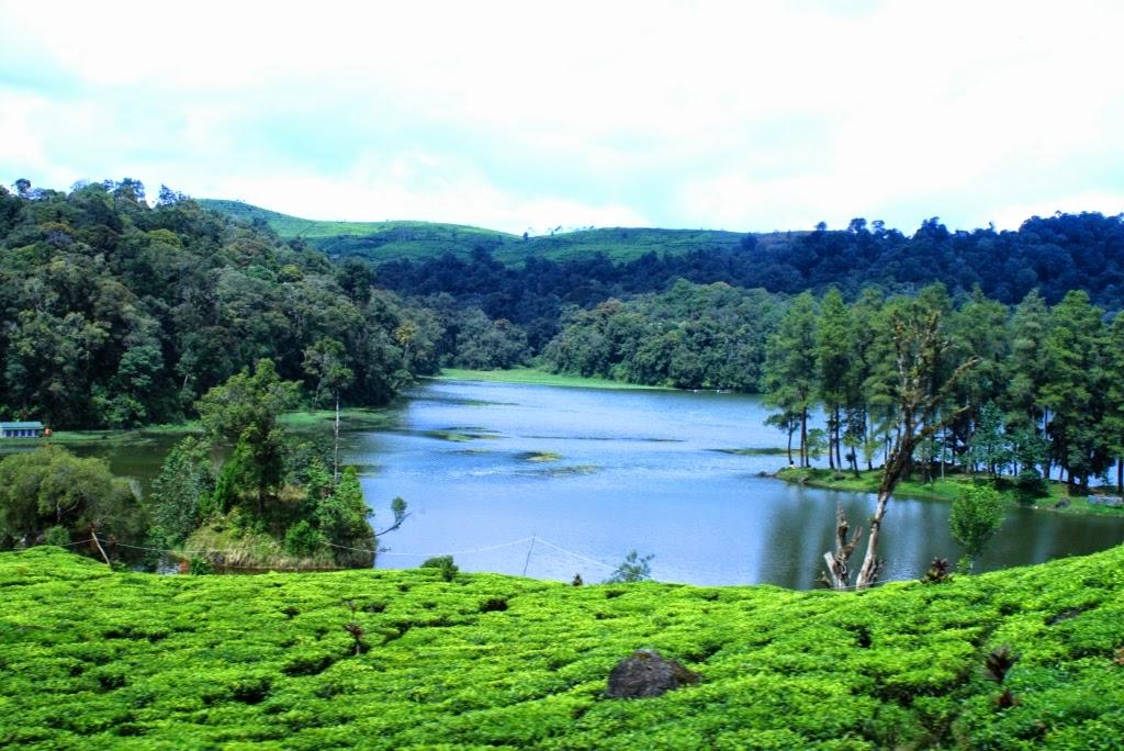 Wisata Alam Situ Patenggang Bandung
