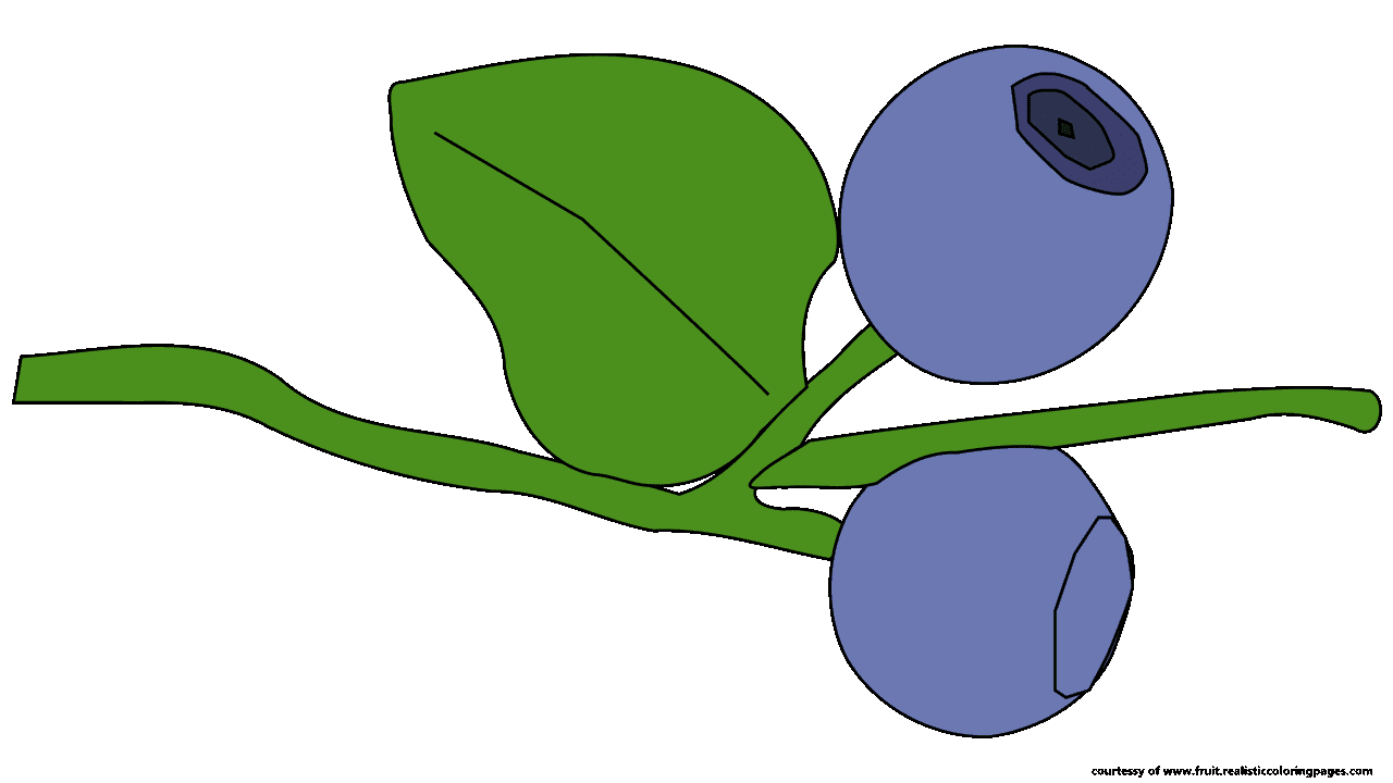 9 fascinating blueberry fruit clipart fruit names a z with pictures