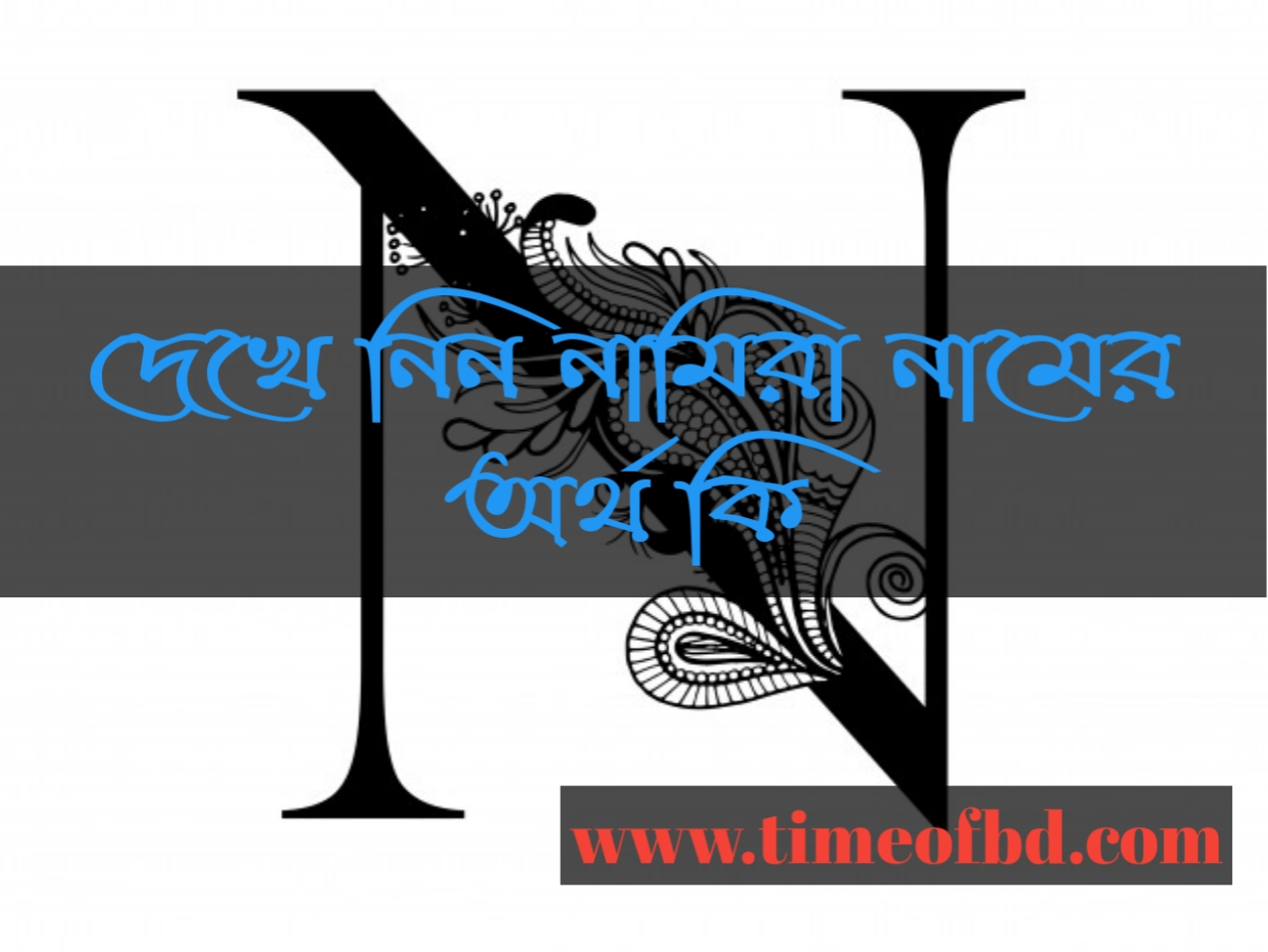 Namira name meaning in Bengali, নামিরা নামের অর্থ কি, নামিরা নামের বাংলা অর্থ কি, নামিরা নামের ইসলামিক অর্থ কি,
