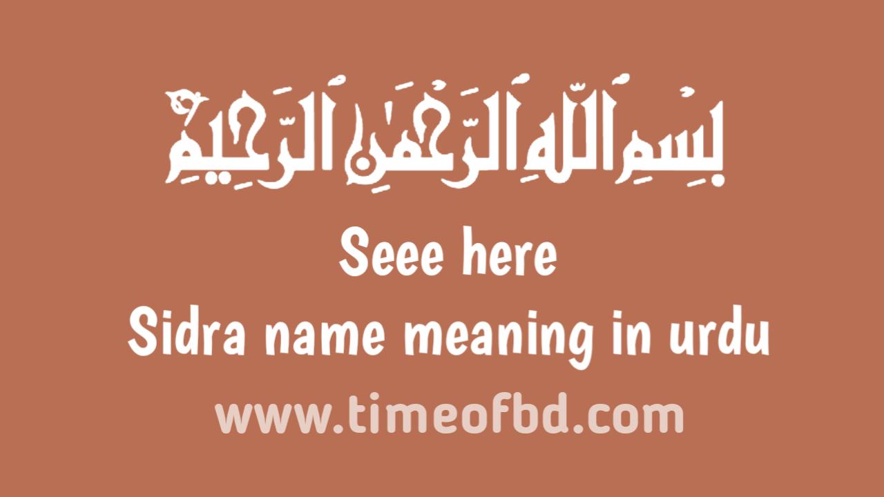 Sidra name meaning in urdu, سدرہ نام کا مطلب اردو میں ہے