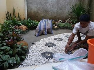 Jasa Tukang Taman Bogor,Jasa Pembuat Taman,Tukang Taman,Kolam Minimalis,Kolam Ikan Koi Murah dan Profesional