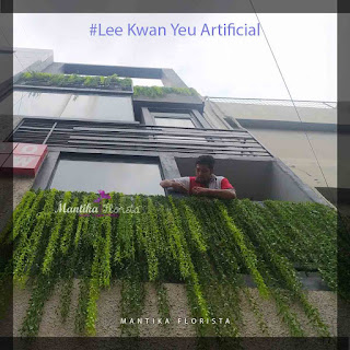 Tanaman lee kwan yeu artificial