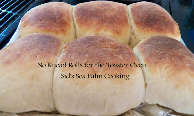Toaster Oven No Knead Rolls