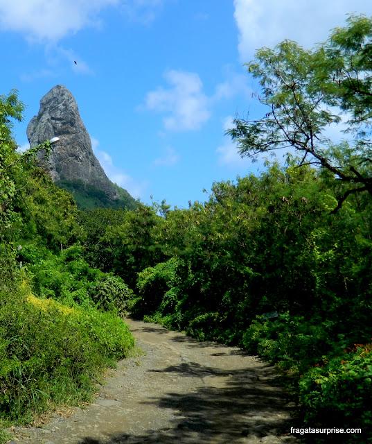 Estrada da Alamoa para a Praia da Conceição - Fernando de Noronha