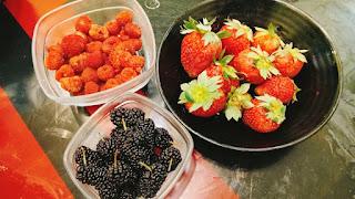 strawberry. raspberry, mulberry