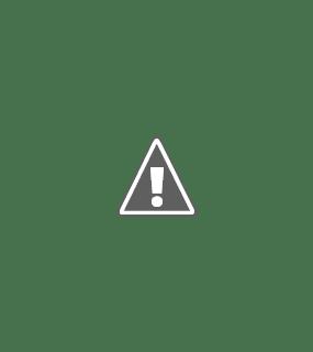 rollacoaster