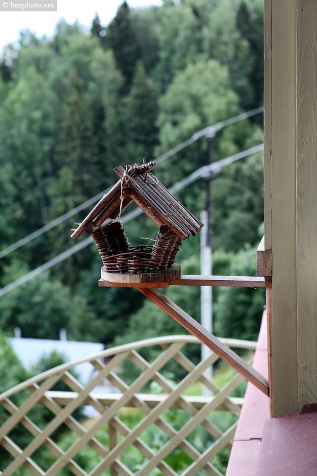необычная кормушка для птиц