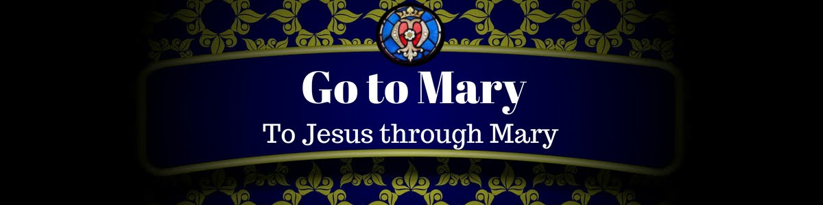 Go to Mary Blog