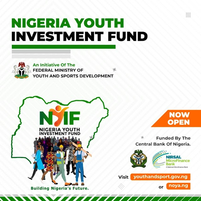 Application Procedure for the Nigeria Youth Investment Fund