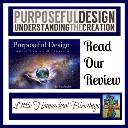 Little Homeschool Blessings: Purposeful Design