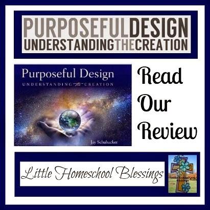 Little Homeschool Blessings: Purposeful Design