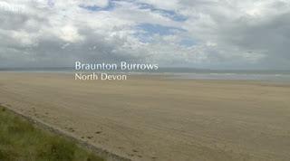 Braunton Burrows