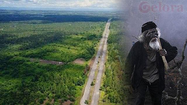 Pindah ke Kaltim, Beredar Cerita Horor Lokasi Ibu Kota Baru di Penajam Paser Utara, Merinding
