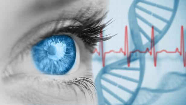 Optogenetics bypassed photoreceptors to make eye nerve cells directly light sensitive 140820691 / vectorfusionart - stock.adobe.com