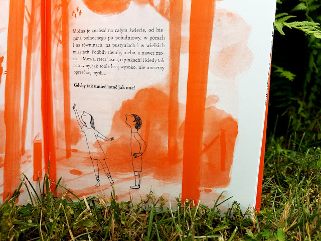 Na dworze. Przewodnik dla odkrywców przyrody - Dwie Siostry - książki dla dzieci - recenzja - blog rodzicielski - blog książkowy - blog parentingowy - Maria Anna Peixe Dias - Ines Teixeira do Rosario - Bernardo P. Carvalho