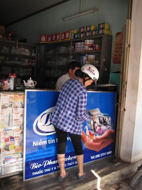 Người chăn nuôi đến một cửa hàng thuốc thú y coi nhãn thuốc kháng sinh để về trị heo bị tiêu chảy