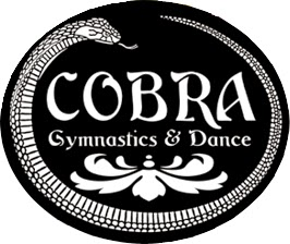www.cobravt.com