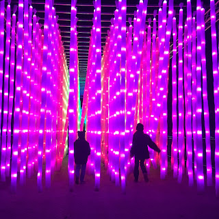 Our autistic boys enjoying the light tunnels