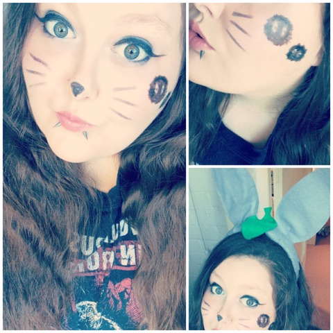 Totoro Cosplay Make Up