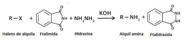 síntese de gabriel ftalimida