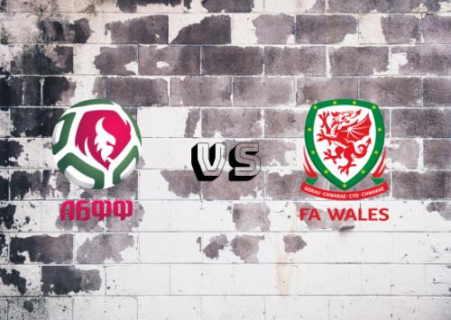 Bielorrusia vs Gales  Resumen