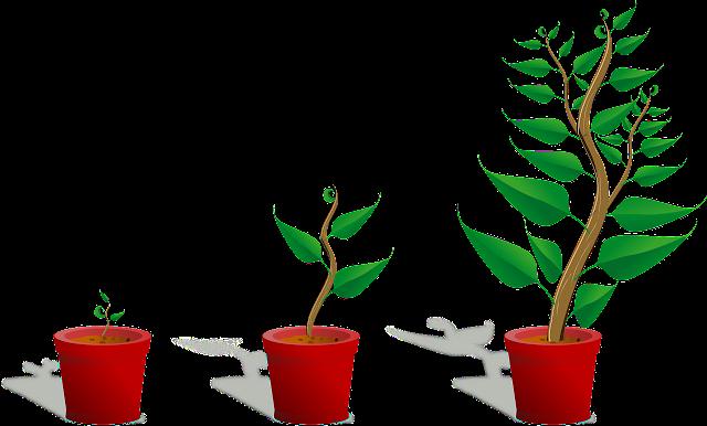 रेवती का संगीत – प्रेमी पौधा कक्षा 5 हिंदी कलरव |  UP Board Solutions for Class 5 Hindi Kalrav Chapter 18