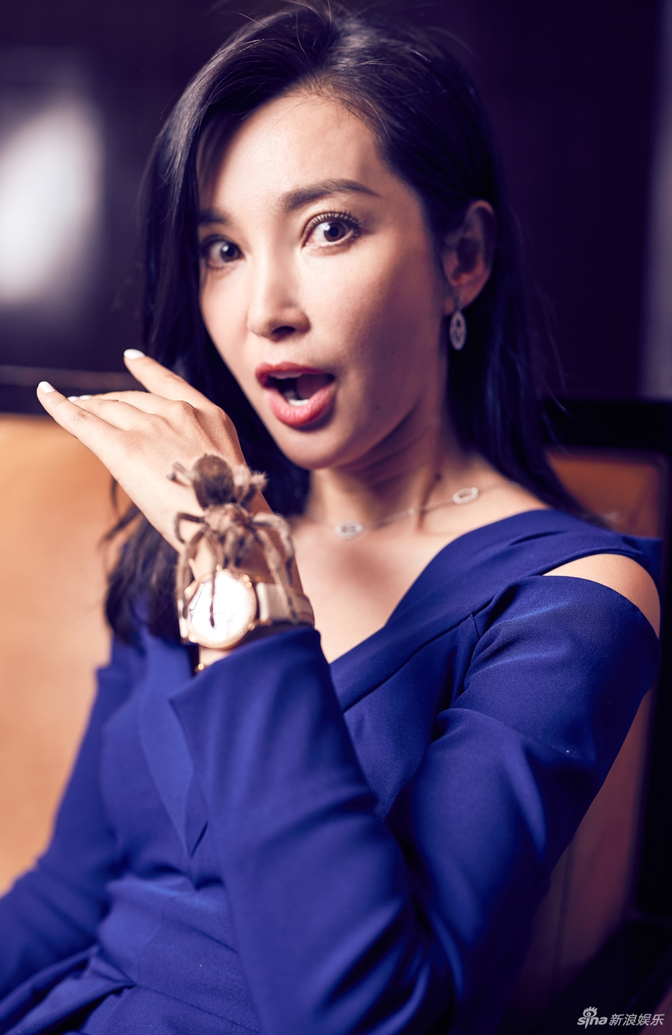 Favorite Hong Kong Actresses  Li Bingbing For  U0026quot Guardians