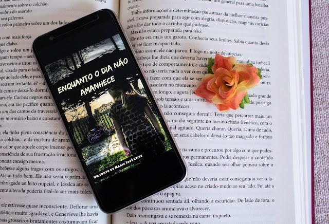 Conto, Enquanto o dia não amanhece - Maria José Leite, Literatura brasileira, blog literário,