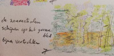 Zonnestralen in het bos tekening met haiku