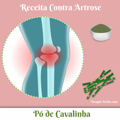 Receita Contra Artrose: Pó de Cavalinha