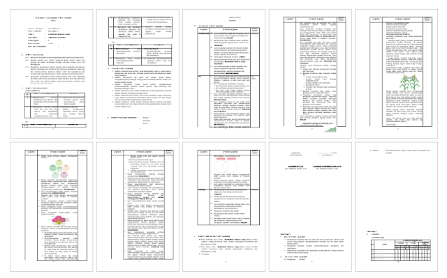 RPP Kelas 6 Kurikulum 2013 Revisi 2018