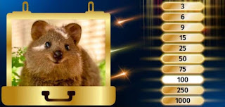 To eliminate the next lowest number of points, take a look at this adorable critter! Do you know which animal this is