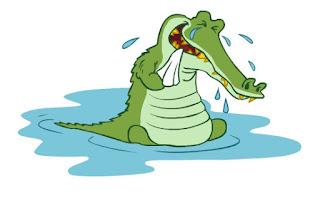 lagrima, crocodilo, jacaré