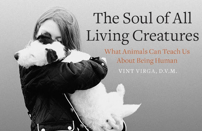 The Soul of All Living Creatures: What Animals Can Teach Us About Being Human [Vint Virga D.V.M.]