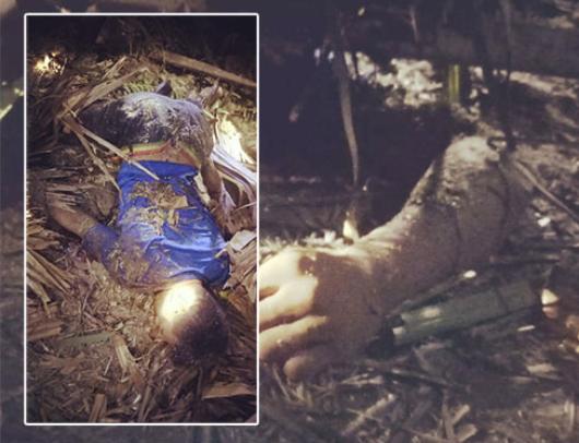 Korban saat tertimpa pohon sawit. Insert: Kondisi korban setelah batang sawit berhasil digeser.