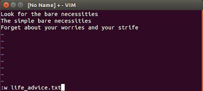Vim write file