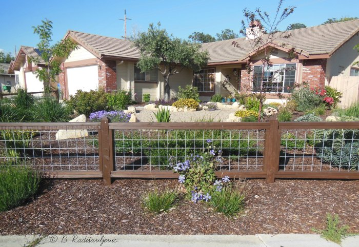 Xeriscaping is Essential in Dry Areas