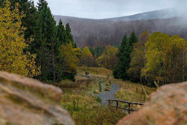 Herbstwanderung im Harz | Torfhaus – Eckerstausee – Bad Harzburg 02